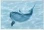 Лагуна Керамическая плитка Лагуна  дельфин малыш декор