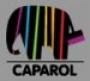 CapaTop-Fassadenputze K 30