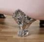Ножки для ванной  Recor Royal